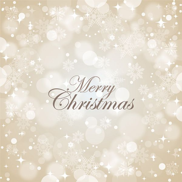 Lace Cosmetics wishes a very merry to you and yours.      xoxo
