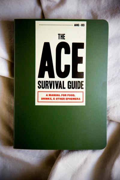 Ace Hotel Job