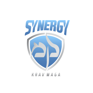 synergy_km_logo.png