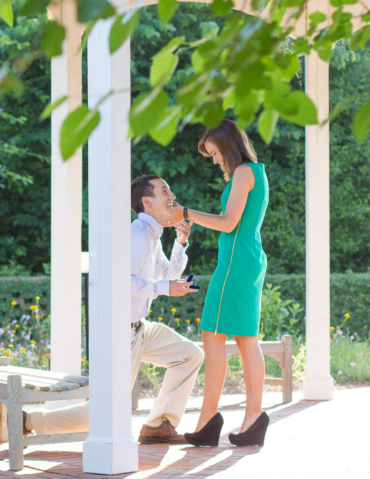 Surprise proposal Athens Botanical Gardens