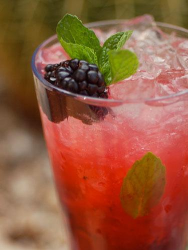 rbk-blackberry-mojito-lgn