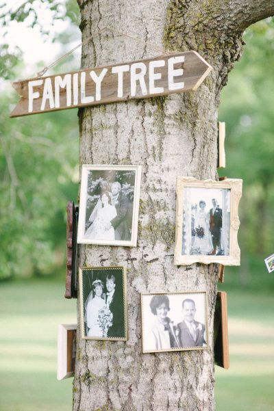 "Using an actual tree as the ""Family Tree"" just makes sense, doesn't it? We think you could add some small frames explaining who is in the picture and their relation to the couple to add another dimension to this excellent idea!"