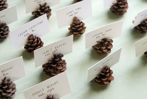 Pine Cone Place Cards - There are so many great images of pine cone place cards. We love their sweet simplicity and value! Just remember to clean them so the pine sap doesn't get stuck on the paper!