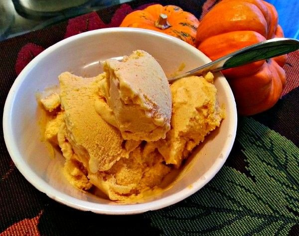 Dairy Free Pumpkin Ice Cream - if I had to pick one dessert to have forever, it would be ice cream! This creamy and Thanksgiving-ish version is also dairy free!