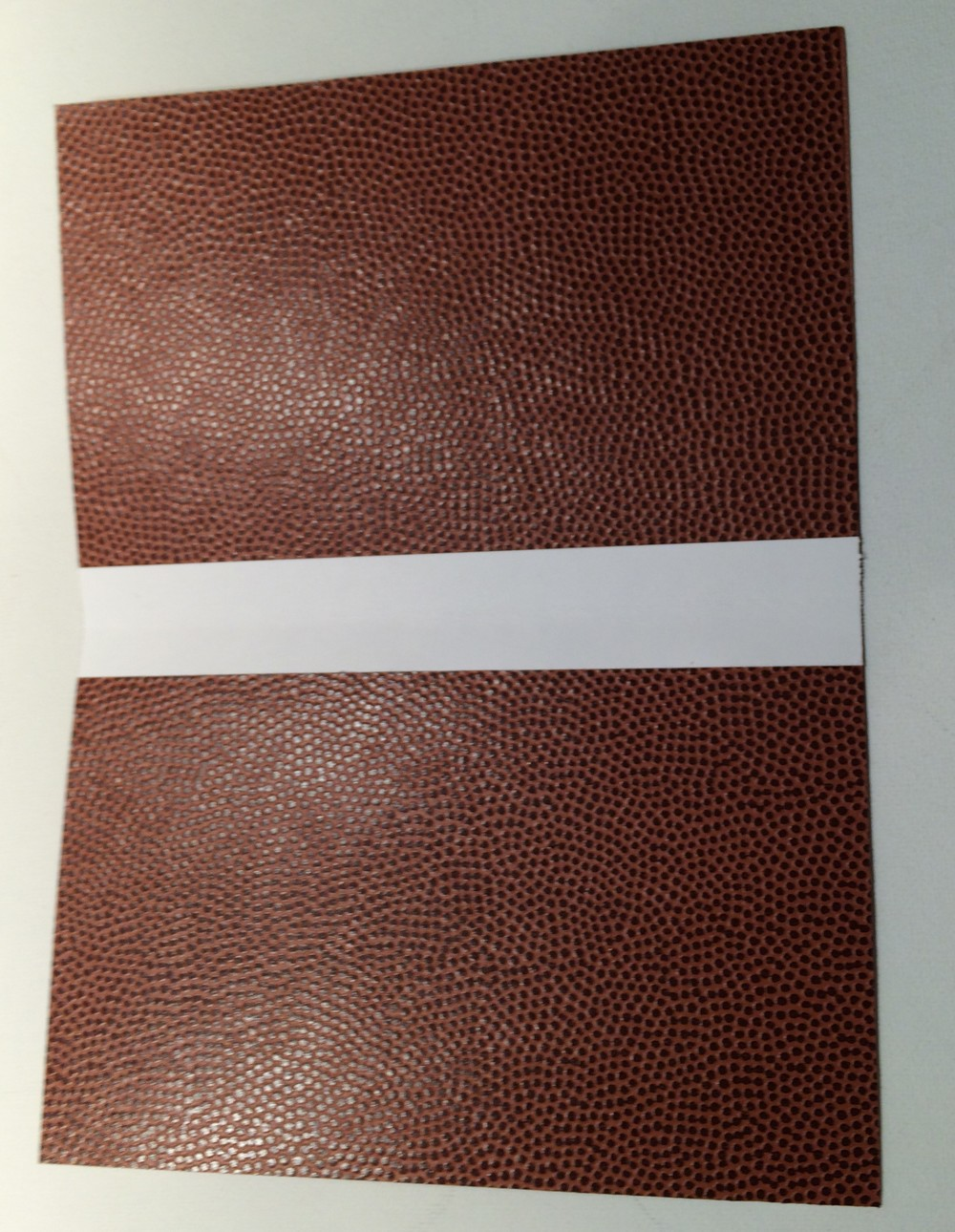 "We took two more 5"" x 7"" pieces of Football paper and secured them together. We cut a 1"" strip of white card stock and glued another piece on top of it and then set this down the center of the two 5"" x 5"" panels to create a folder."