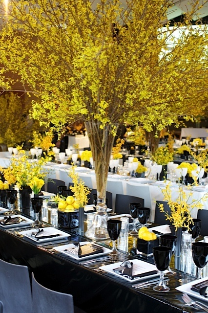 forsythia reception.jpg