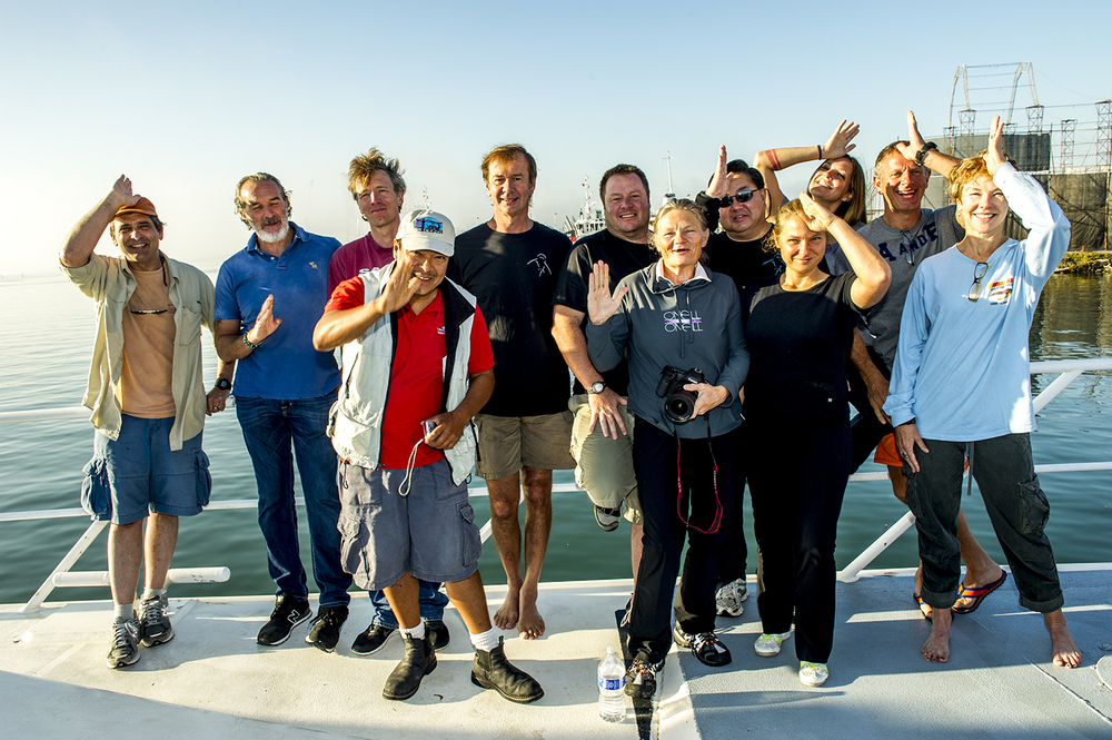 Great White Shark Dive Team 2013