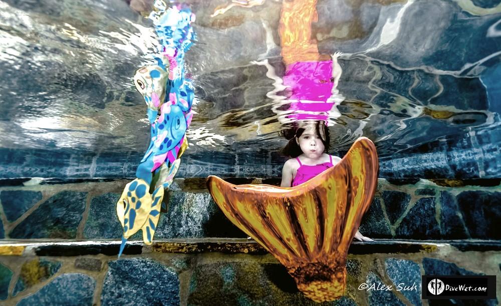 MARKED Pres Mermaid w Fish_tn.JPG