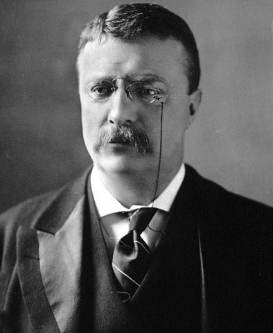 493pxTheodore_Roosevelt_circa_1902.jpg