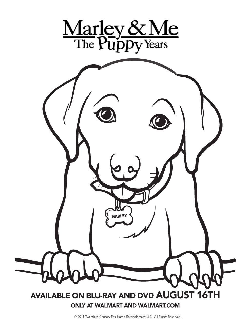 marley u0026 me the puppy years giveaway u2014 tiaras u0026 tantrums