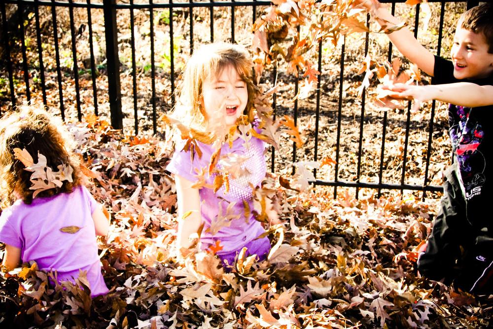autumn-18.jpg