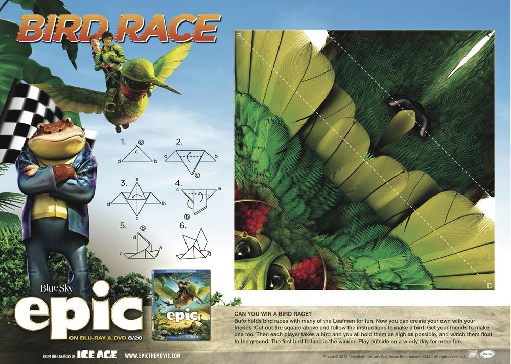 epic_activitysheet_bird_race JPG.jpg