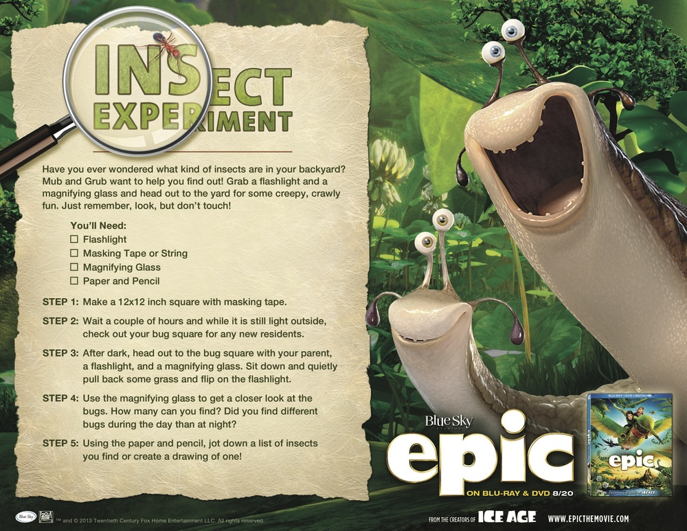 epic_activitysheet_insect_experiment JPG.jpg