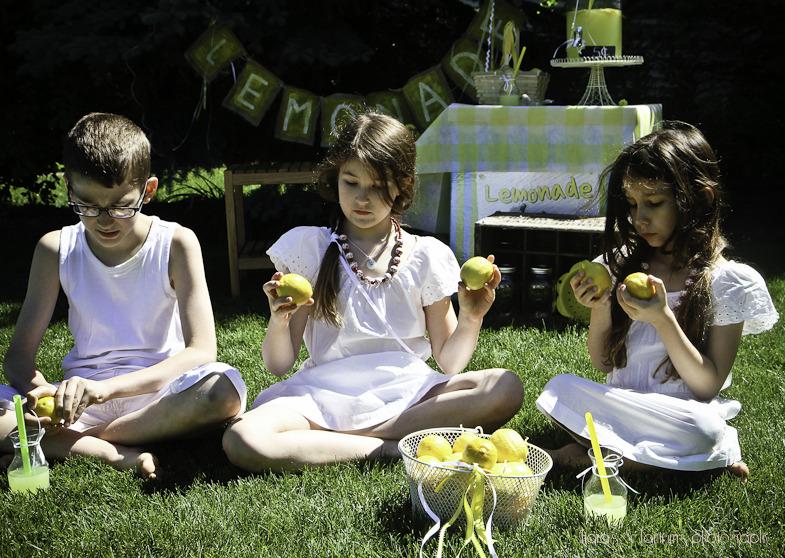 lemonminis (17 of 1).jpg