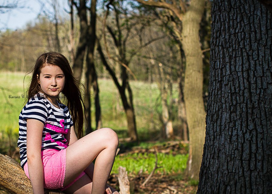 sitting on a tree