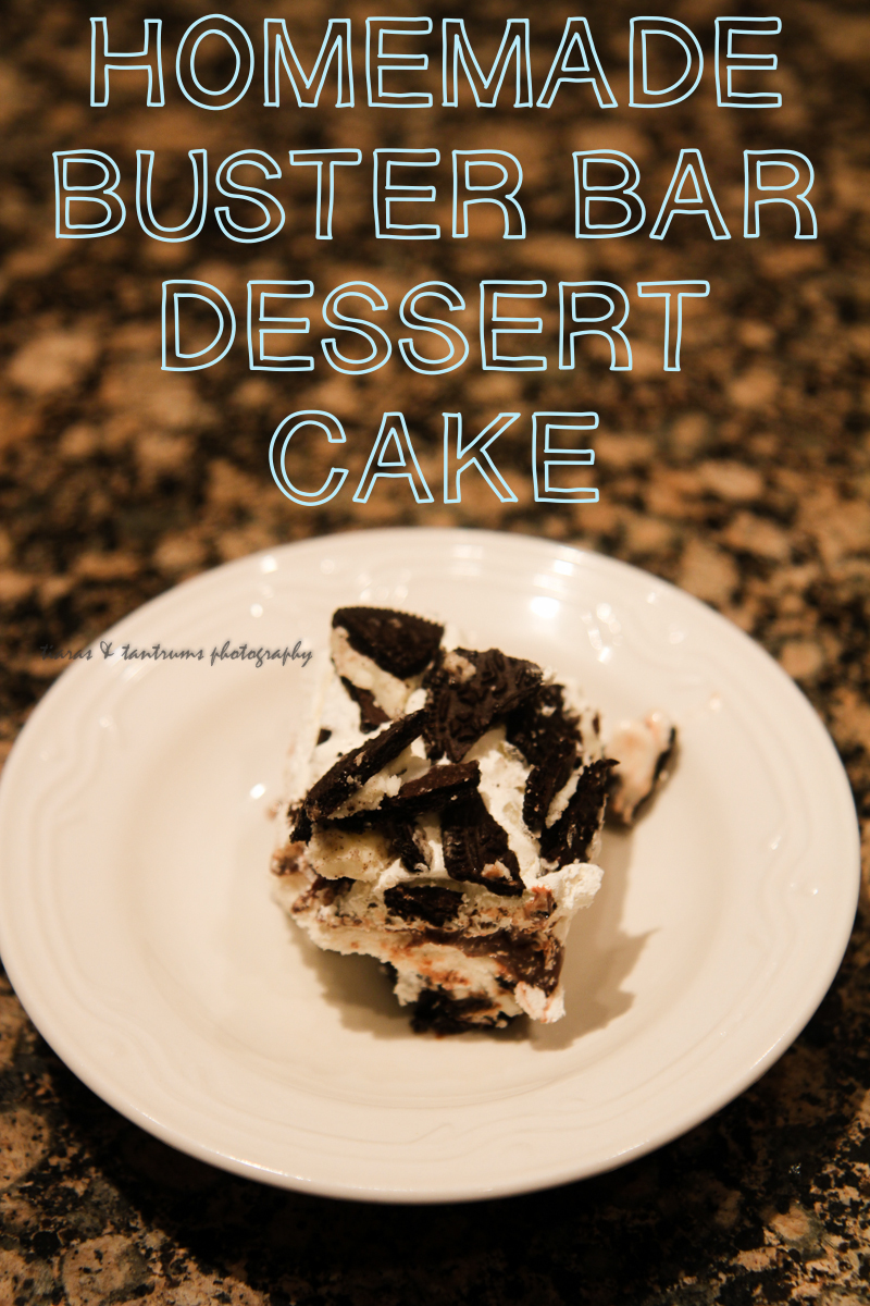 Homemade Buster Bar Dessert Cake Recipe