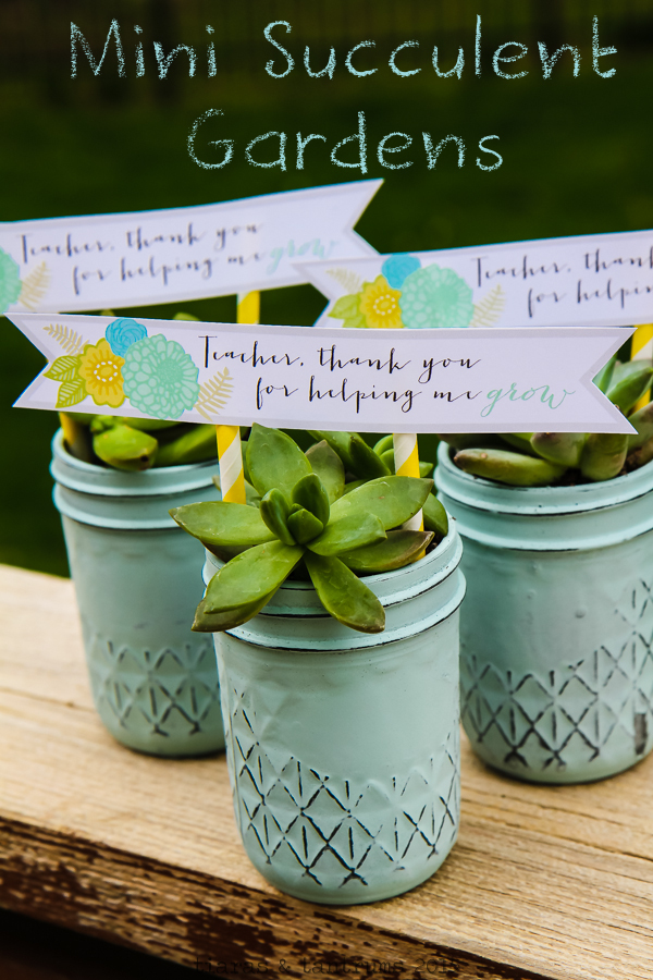 DIY Succulents In Mason Jars with HP MyPrintly #CMYK