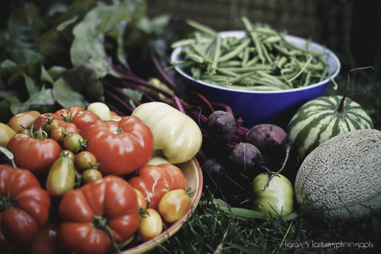 Make a Dish with Your Backyard Garden Bounty