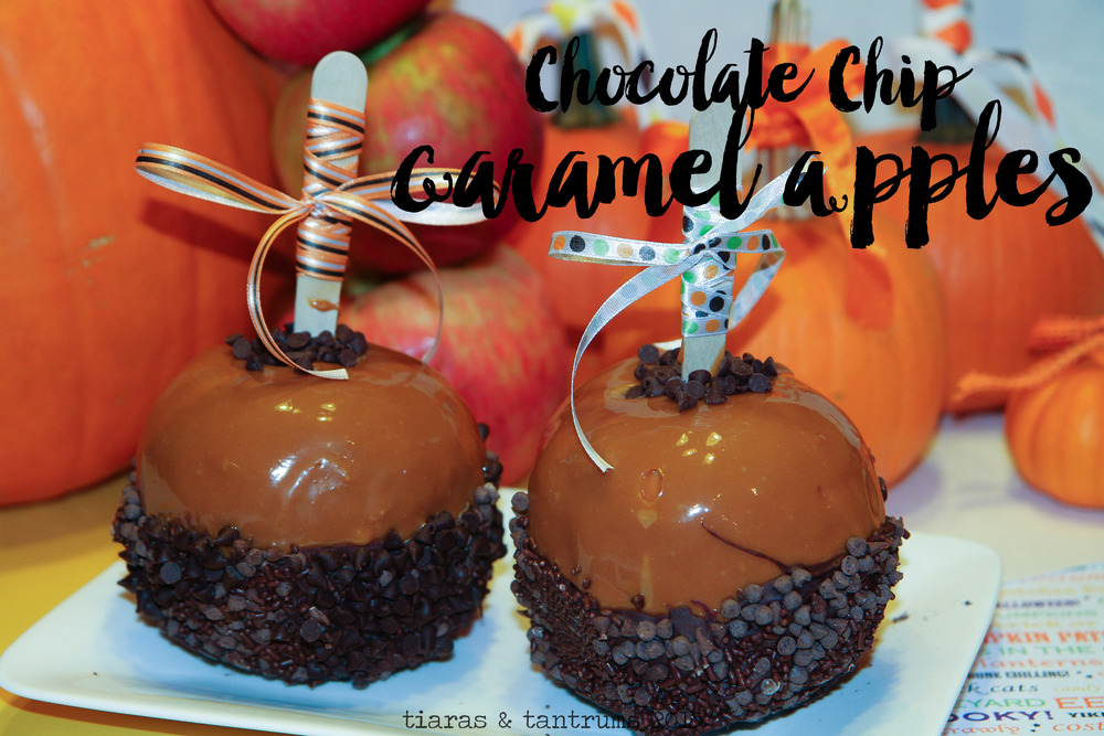 Chocolate Chocolate Chip Caramel Apples