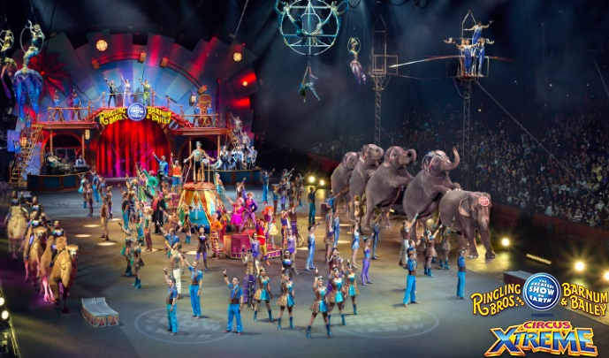 Ringling Bros and Barnum & Bailey® in Chicago Presents Circus XTREME #CircusXtreme {Review}