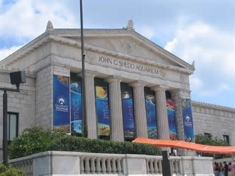 FREE Museum Days in Chicago 2016