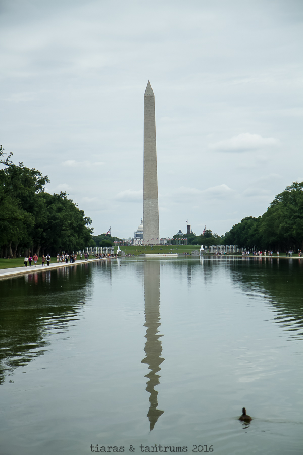Places to Go This Summer Washington D.C.