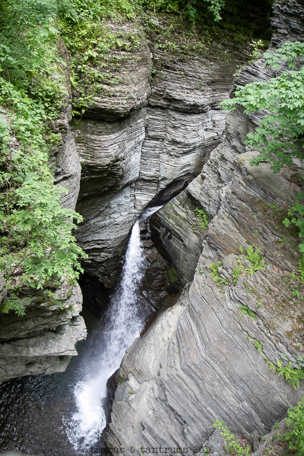 Little Known Facts You Wish You Knew About Watkins Glen