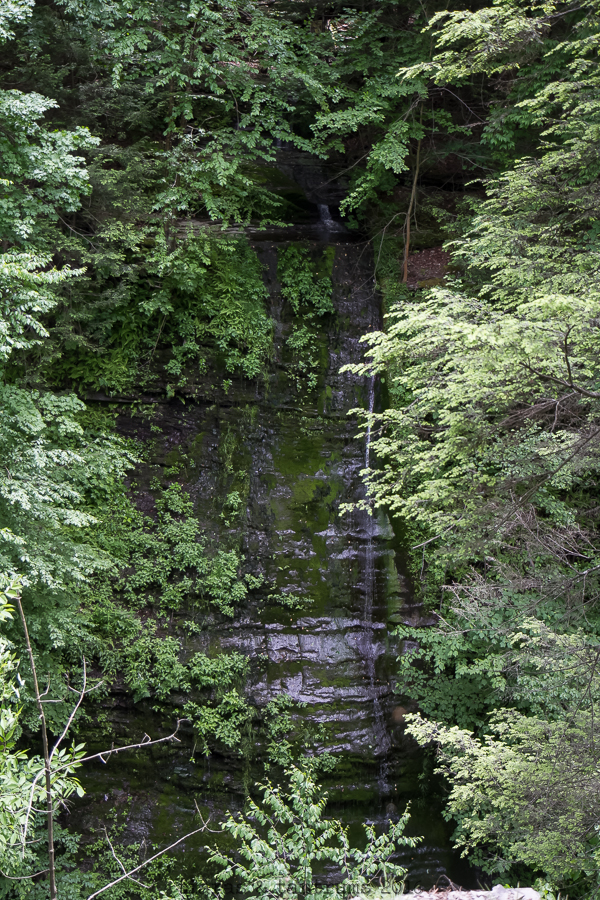 Watkins Glen State Park: Little Known Facts You Wish You Knew