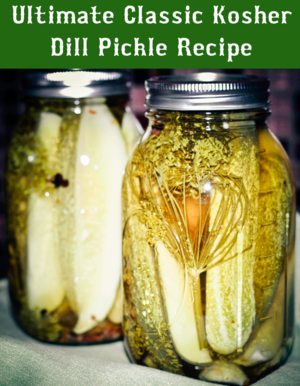 Classic Dill Pickle Recipe