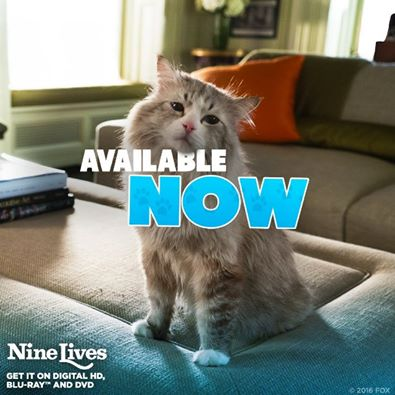 Nine Lives Kitty Cat Ice Cream Cookie Sandwiches #NineLives