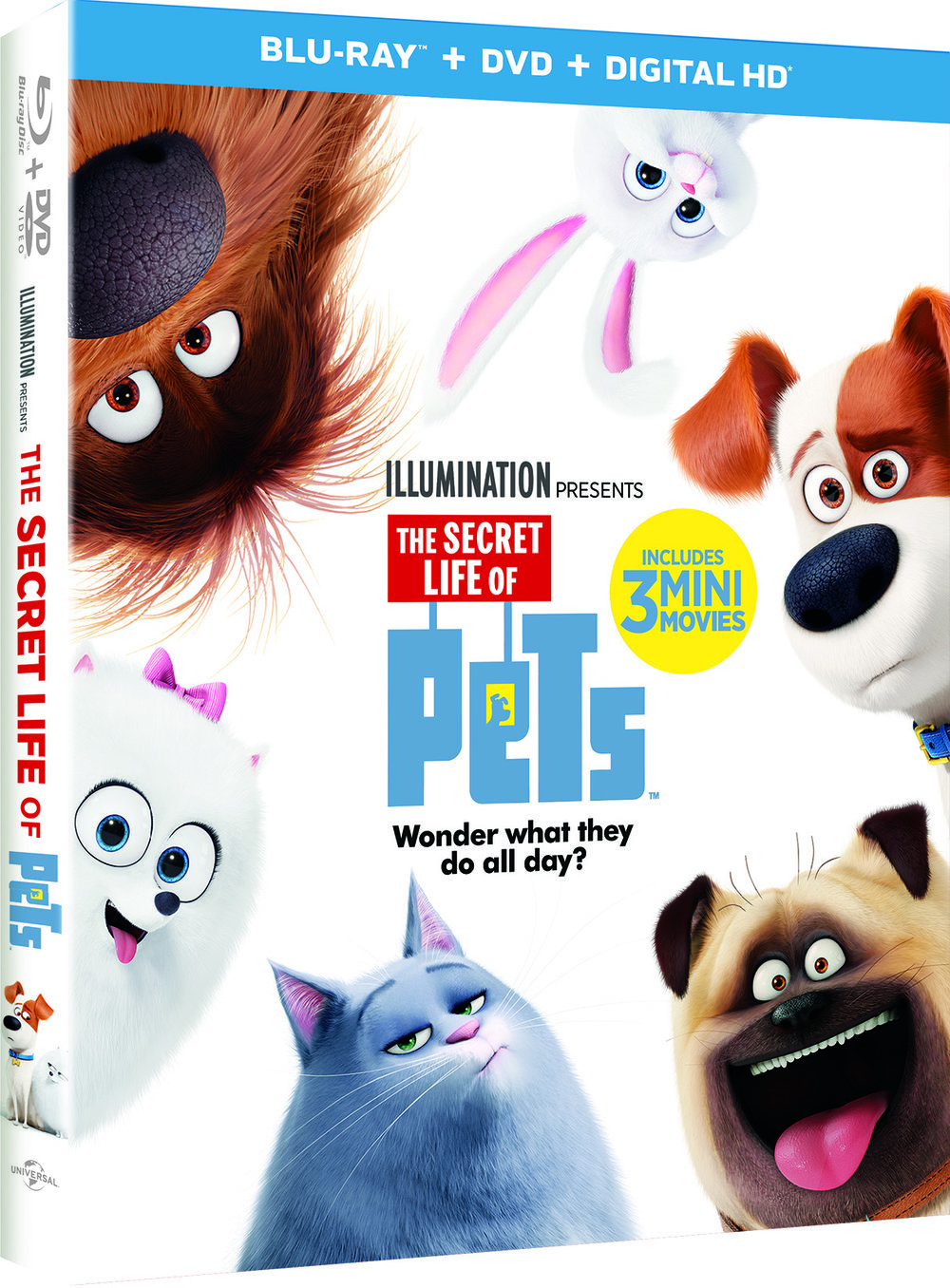 The Secret Life of Pets DVD GIveway