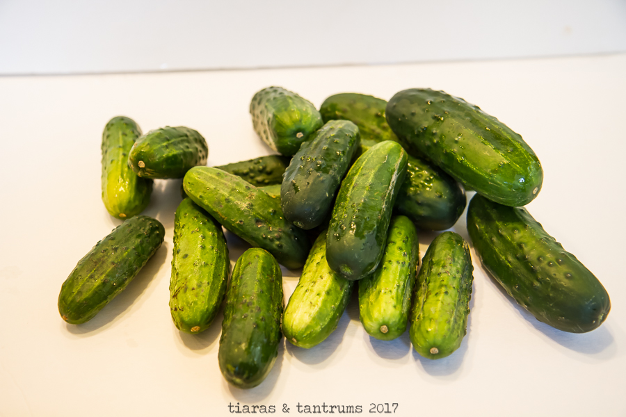 Classic Kosher Dill Pickle Recipe
