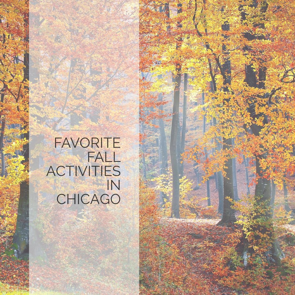 FAVORITE FALL ACTIVITIES IN CHICAGO