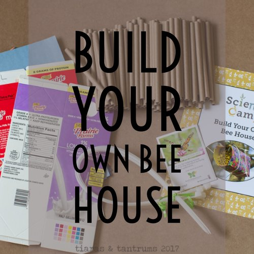 Tiaras tantrums tiaras tantrums homeschool journal build your own bee house campsci solutioingenieria Image collections
