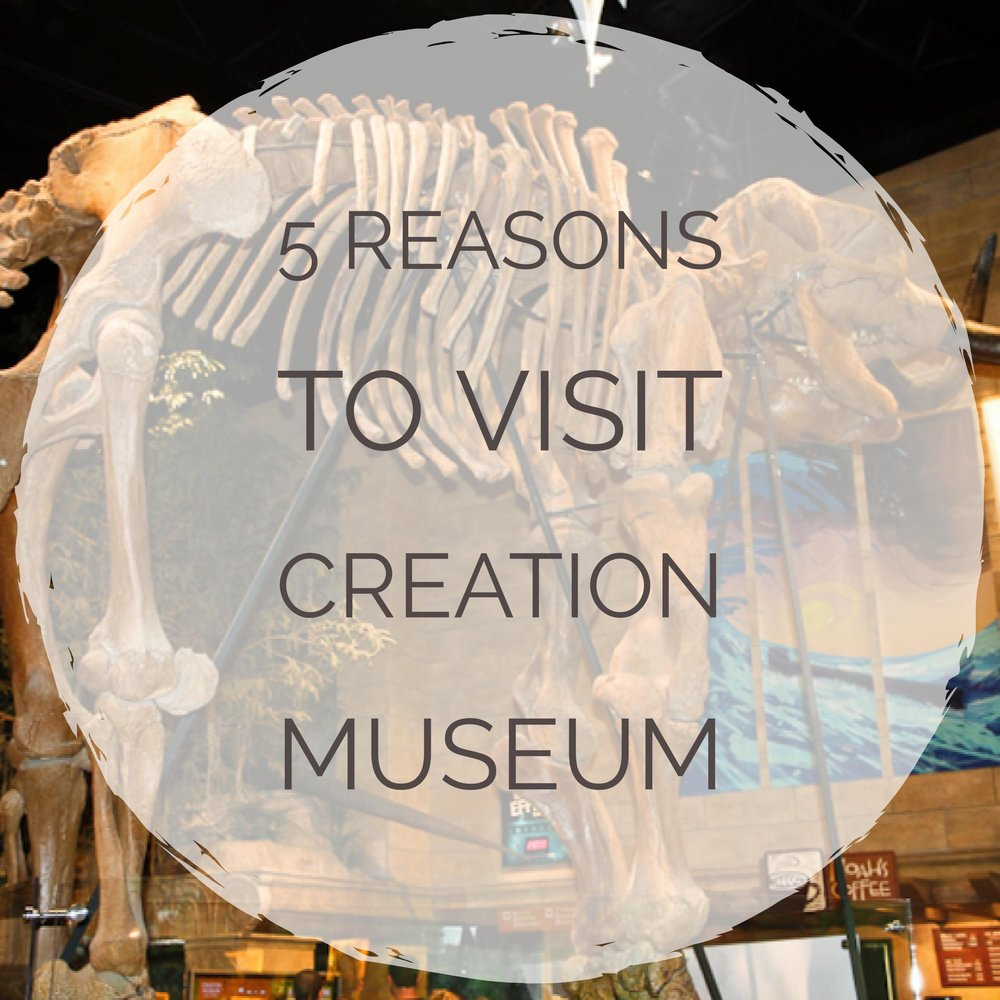 5 Reasons to Visit Creation Museum