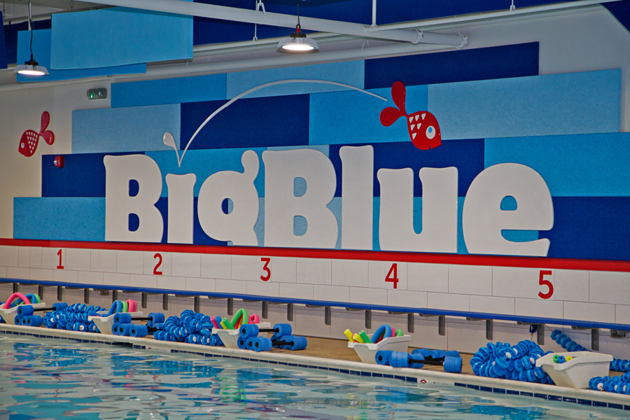 Swim Lessons and Big Blue Swim School