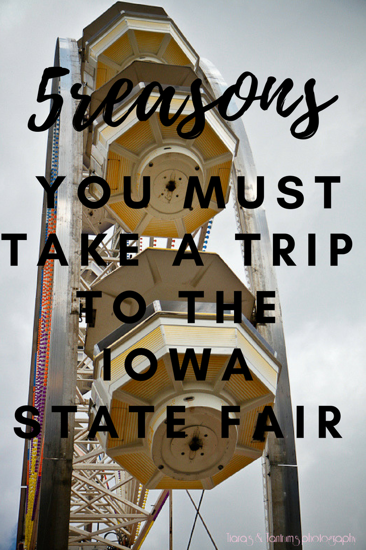 5 Reasons You Must Take a Trip to the Iowa State Fair