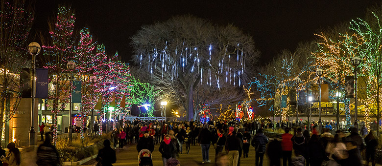 12/20/15 7:13:14 PM -- Chicago, IL, USALincoln Park Zoo Lights© Todd Rosenberg Photography 2015