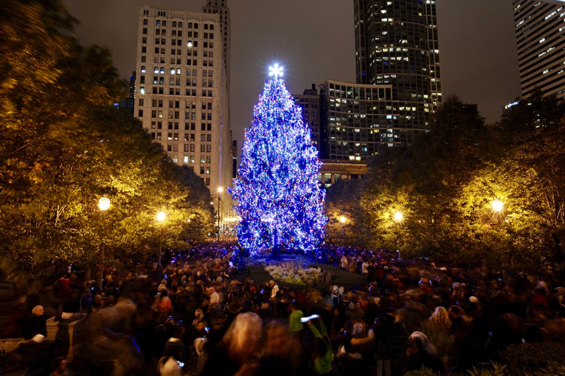 Chicago Guide to the Holidays Chicago Christmas Tree in Millennium Park