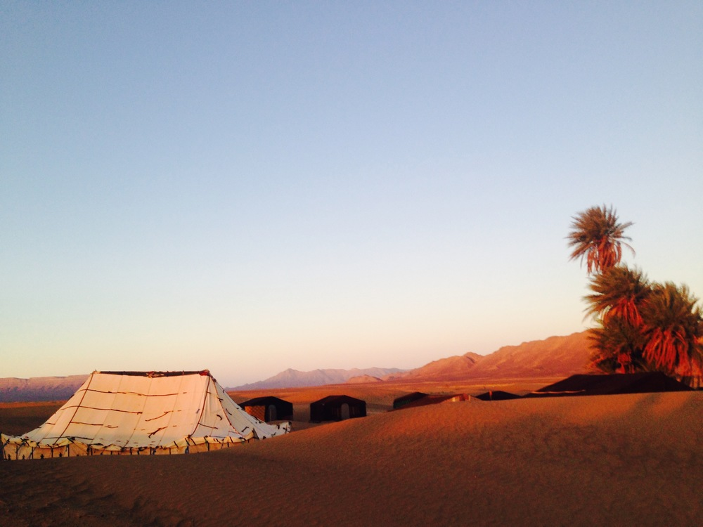 Our Berber Camp next to the Oasis