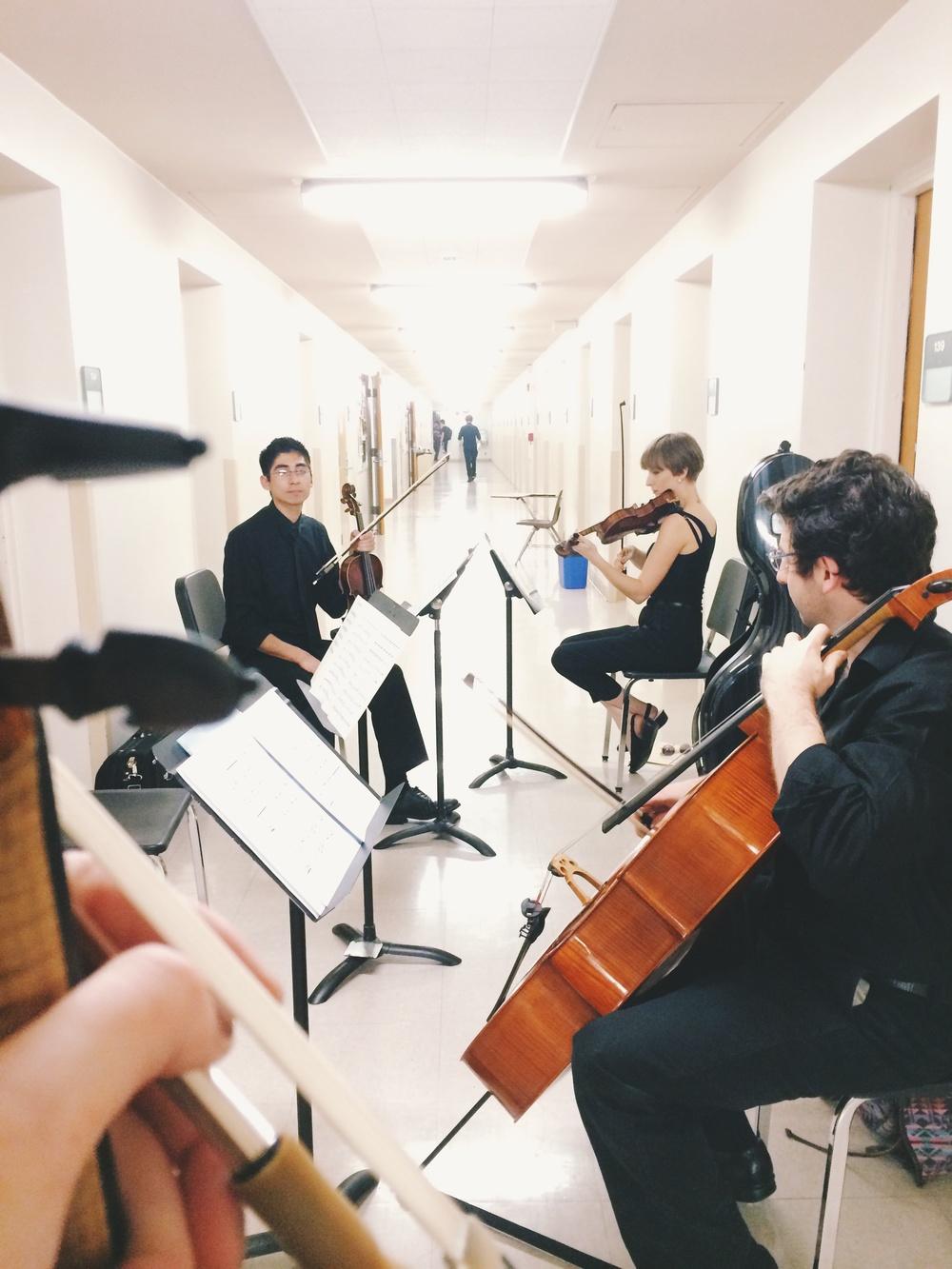 impromptu quartet rehearsal in the hallway