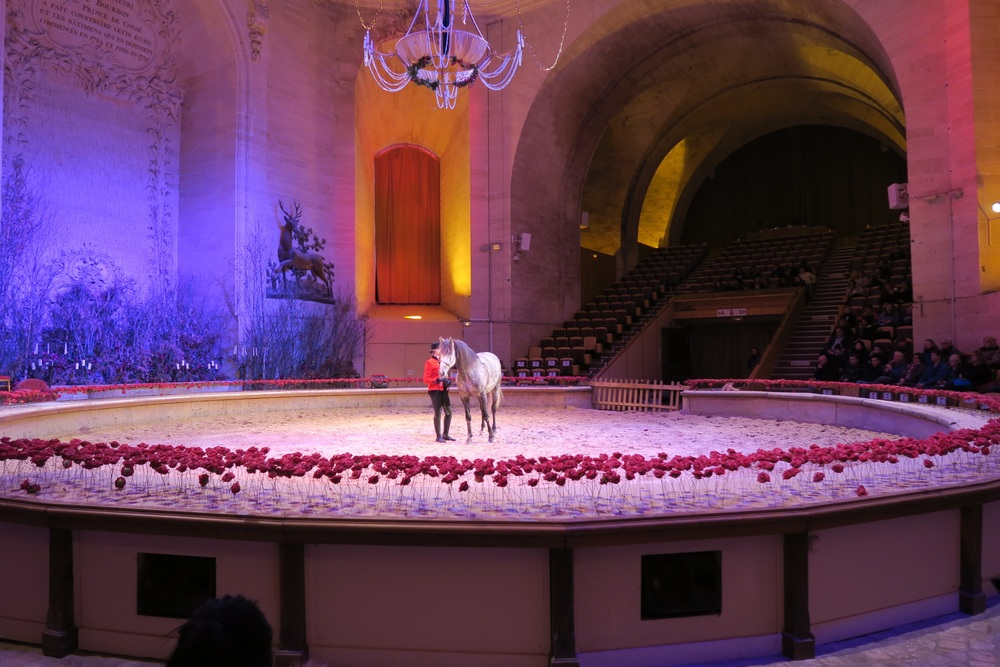 ^ we got to see a show all about how they train their show horses.