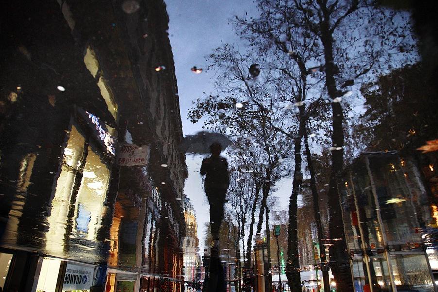 Chien_et_loup_(Paris).jpg