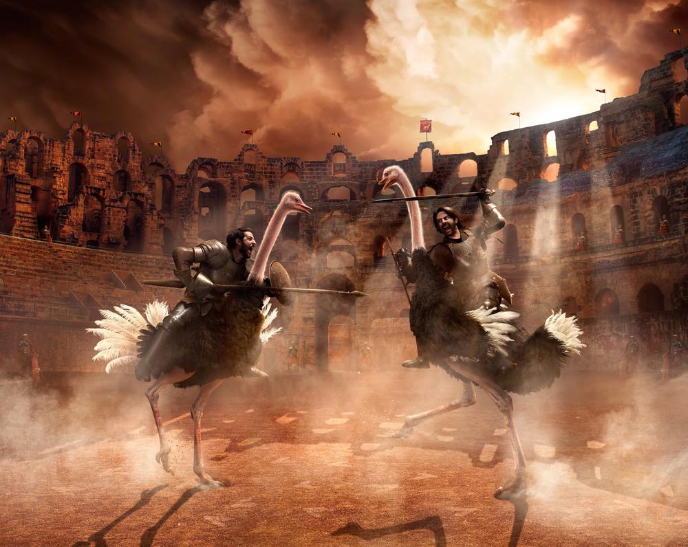 L2_Ostrich.jpg