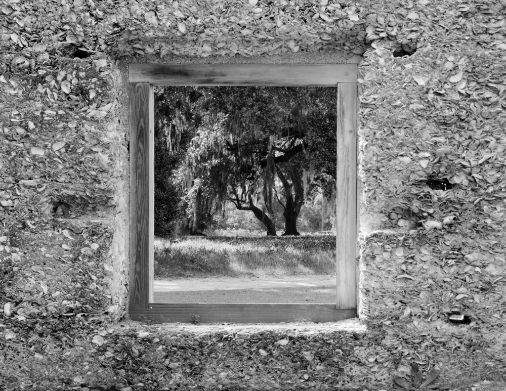 Window and Oaks Sprng isl.jpg