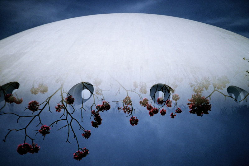 Lunar-by-Jorge-Sato-(60x40cm).jpg