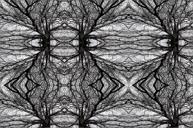 TREE-LIFE-WEB-2,-105X-157,5-CM.-RICARDO-B.-SANCHEZ.jpg