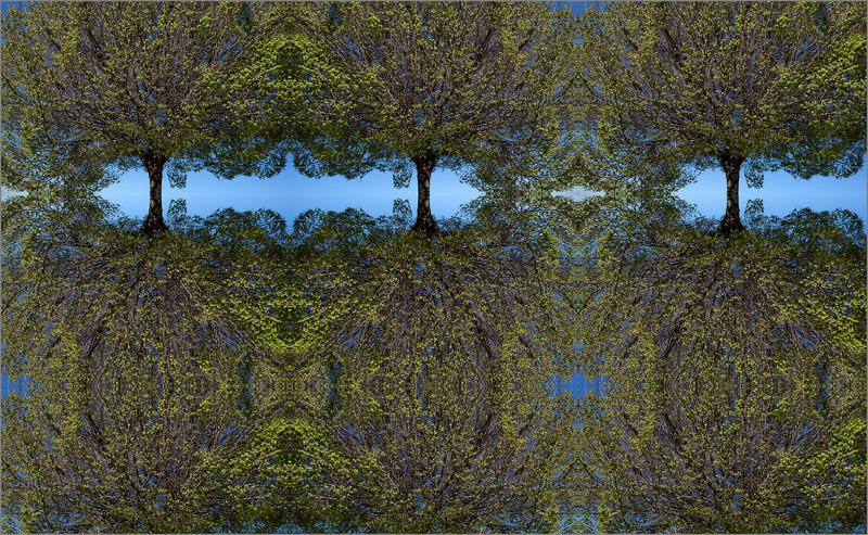 TREE-LIFE-WEB-6,-105-X-170-CM,-RICARDO-B.-SANCHEZ.jpg