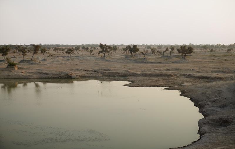 Wüstensee-_-130-x-200-cm-_-Rajastan-2011.jpg