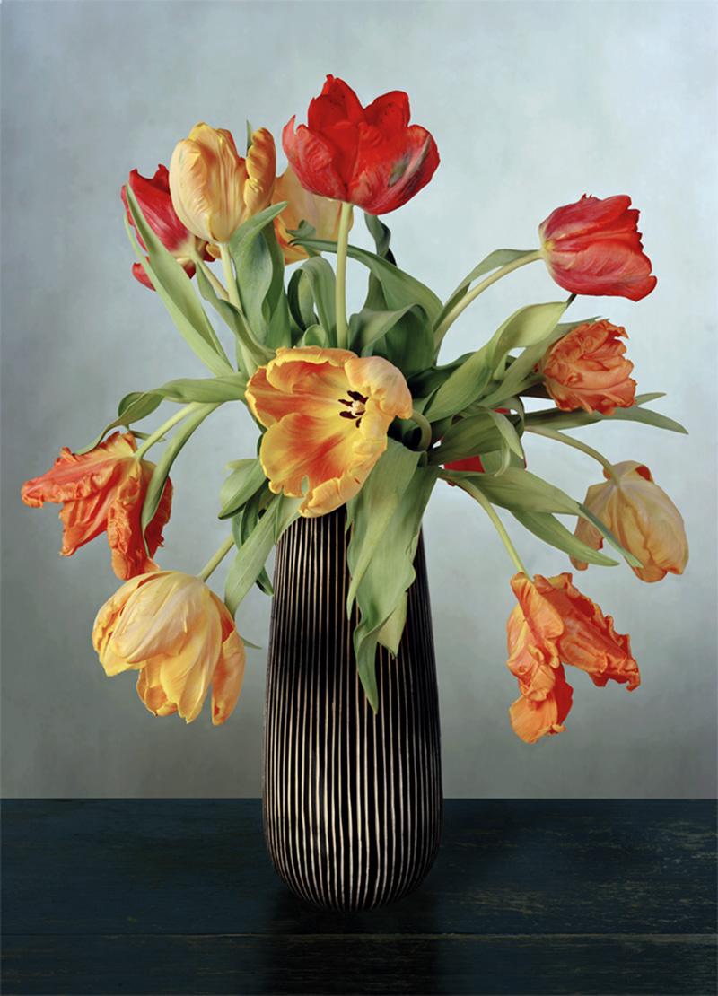 Kris-Scholz-_-Tulpen-_-240-x-180-cm-_-2006.jpg